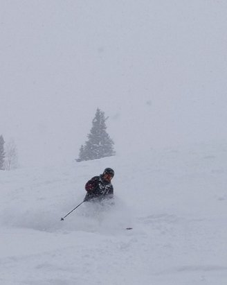 Park City - Powder!  - © anonymous