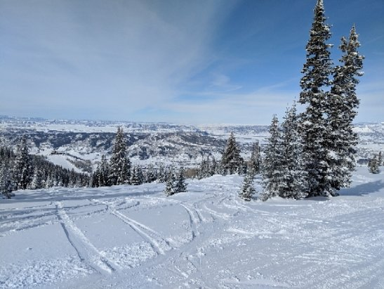 Steamboat - Awesome day on the boat. plenty of powder to be had off the beaten path.  - © Shaf