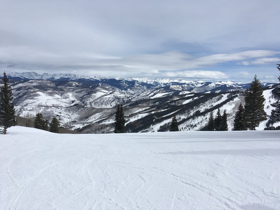 Beaver Creek - Good coverage. As of Feb 25th, snow conditions are hardpacked with some pow in trees. Gets icy in pm. Set edges.  - © iPhone