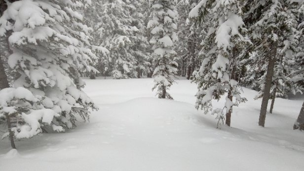 Loveland - Awesome powder day!!! - © anonymous