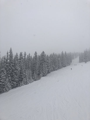 Winter Park Resort - Snowed all day long. Piles of fresh powder everyday. Long lift lines at the base, but mid-mountain was great. Epic day.  - © sulyn