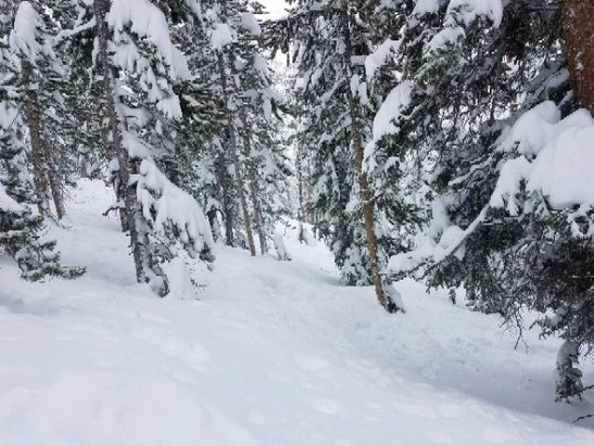 Keystone - wow Thursday was amazing! - © tree basher