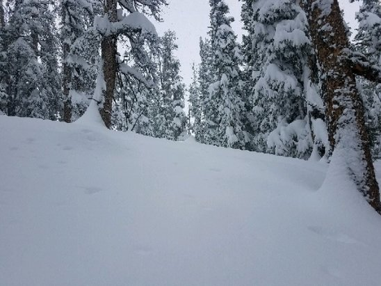 Keystone - last Thursday was the deepest day of the season. - © tree basher