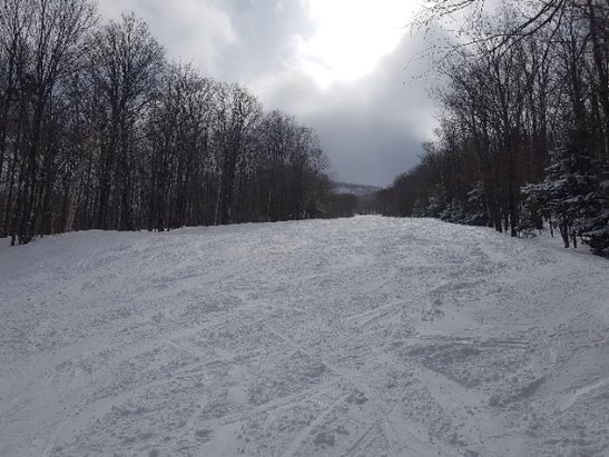 Mont Sutton - Fresh Snow on Tuesday.  Very fun day. Warming up now. - © anonymous