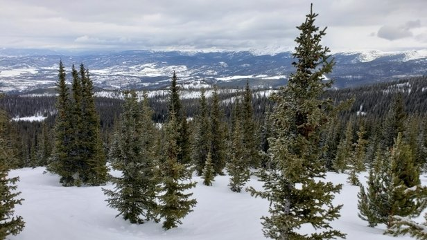 Copper Mountain Resort - wow. packed powder with some fresh on top. trees even better. - © mark harris