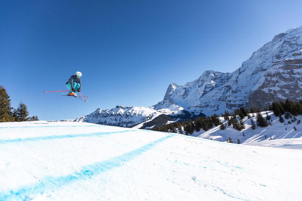 Die Skicross-Strecke verläuft vom Maulerhubel hinab nach Winteregg - © SCHILTHORNBAHN AG