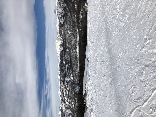 Wolf Creek Ski Area - Wonderful snow. Lines not too long! No ice. No wait on back of mountain - © Anonymous