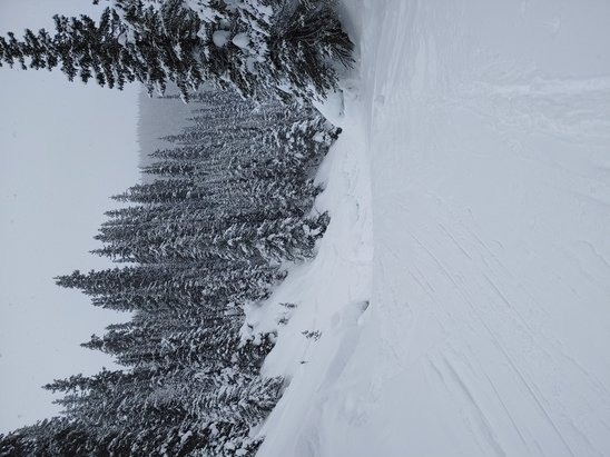 Sunshine Village - Had a great day yesterday (Jan 28). It was snowing all day, which provided a light powdery cover on almost every run we went to. We did just run greens and blues but several different runs. The ski out was good too. Mid-week really proves itself for parking and lineups! Pic is from upper Canyon on the way out. - © YYC skier