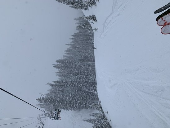 Big Sky - The most amazing time we've ever had!! Fresh powder. Been snowing for 2 days!! - © Jamie and Lori Crumley