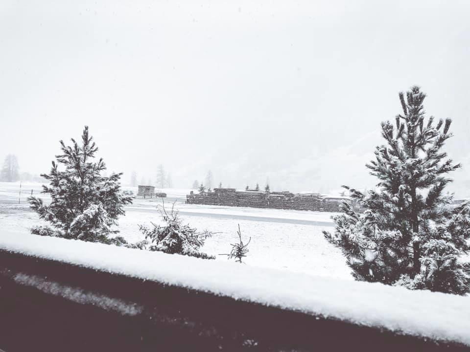 La prima neve a Livigno 03.11.19 - © Livigno Facebook