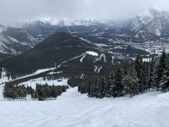 Mt. Norquay - Nice packed powder on Norquay chair.  Those runs have not gotten any easier, huge moguls but beautiful runs and conditions.  The other chairs were good, more groomed but soft as above zero.  I have not been to Norquay in years, great hill, I will be back. - © Graham