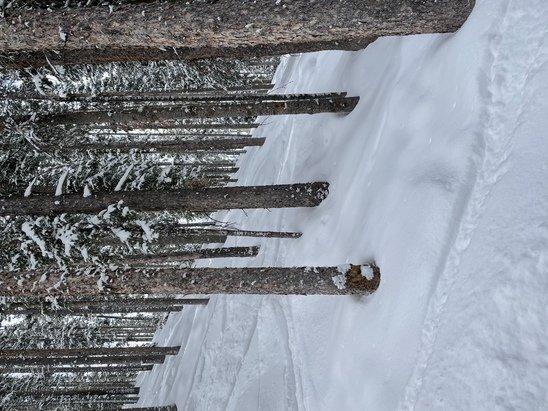 Telluride - Fresh powder this morning!  - © Gary