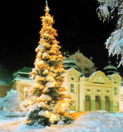 Weihnachtsbaum - © Berchtesgadener Land