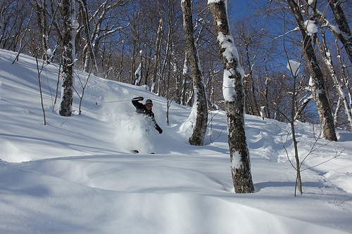 Jay's legendary glades on an Epic Powder day Feb. 26, 2012. - © Jay Peak Resort