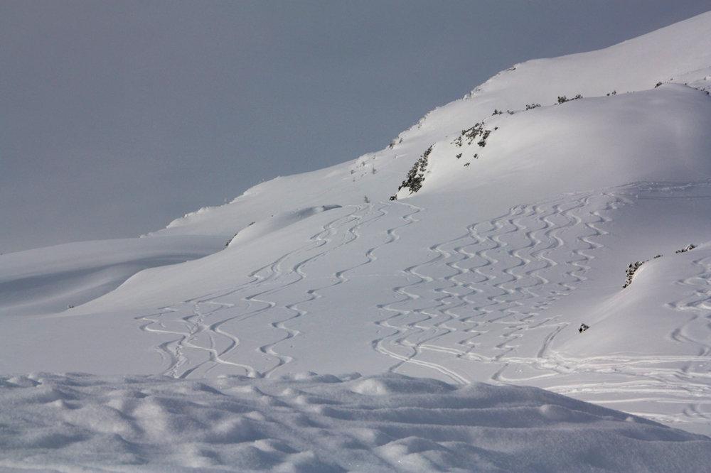 Gipfelhang Toreck - © Erika Spengler