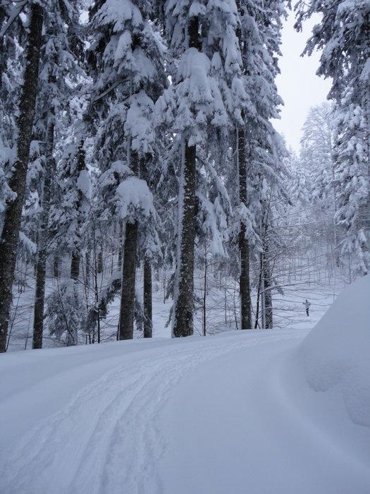 Verschneite Landschaft in Abetone (ITA)