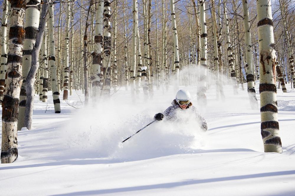 Photo courtesy of Powder Mountain Snowcat Powder Safari