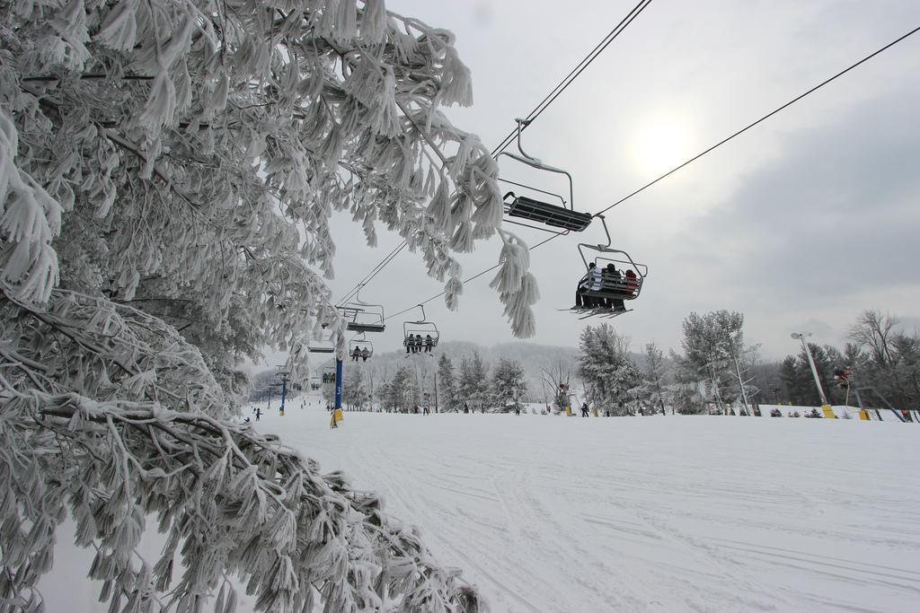 Liberty has had a good supply of fresh snow this season. Photo Courtesy of Liberty Mountain.