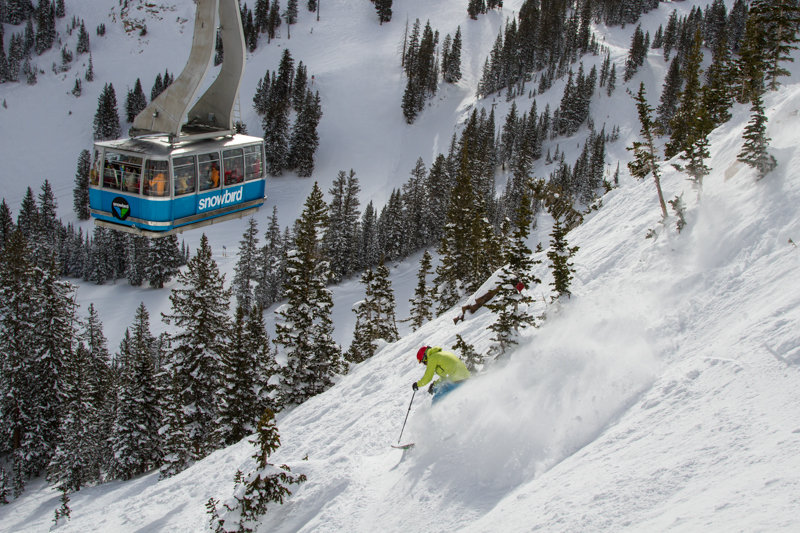 The terrain under Snowbirds aerial tram was perfect for testing all mountain skis. - © Liam Doran