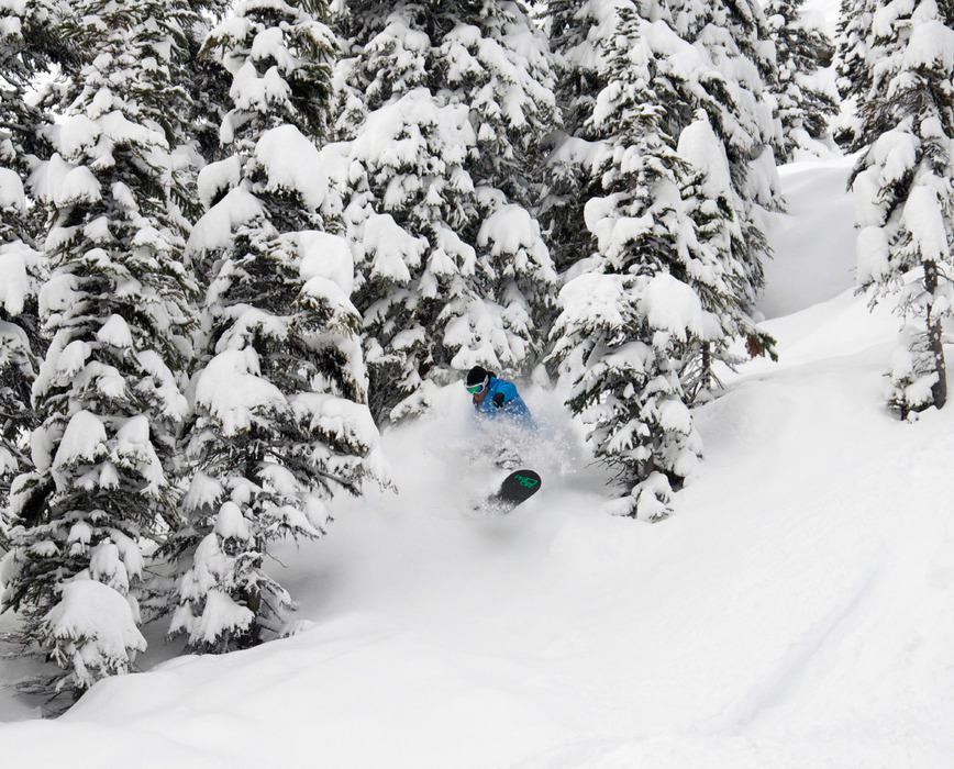 Powder in Marmot Basin. Photo courtesy of Marmot Basin.