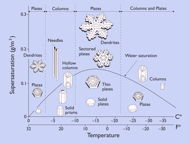 The size and shape of snowflakes is determined by the temperature and moisture content of the air. Large dendrite snowflakes create the lightest, fluffiest powder for skiers and riders. Temperatures between about 0-10 F and a high amount of moisture in the air are the conditions necessary