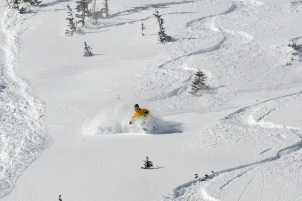 Snowboarders in powder in Park City, Utah