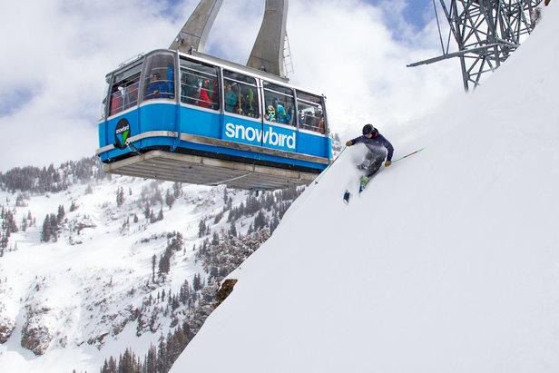 OnTheSnow Ski Test 2014/2015 in Snowbird, Utah - ©Cody Downard Photography