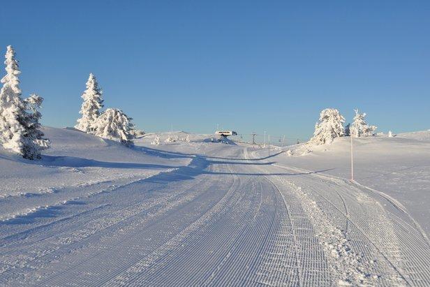 Nysnøen kommer til Østlandet i helgen- ©Vibeke Fürst Holtmann