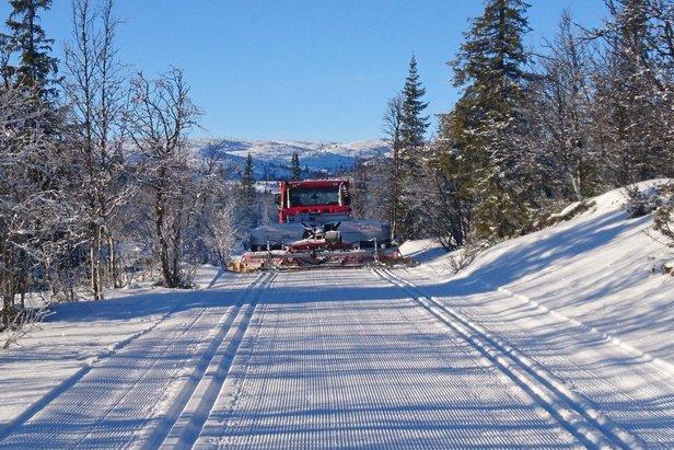 Over 1200 kilometer preparerte langrennsspor i Hallingdal  ©Ståle Dalseide