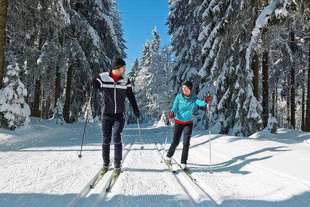 Langlaufen im Bayerischen Wald: Die vier schneesichersten Spots für Loipenjäger- ©Tourismusverband-Ostbayern Tourismus e.V