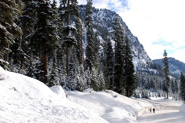 Alpental WA road