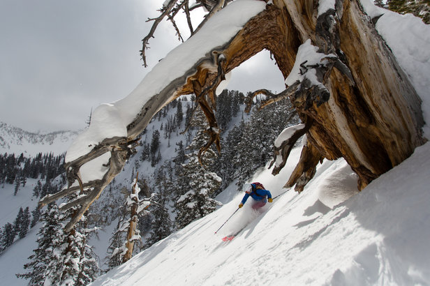 Alterra to Acquire Solitude Mountain in Utah ©Wray Sinclar