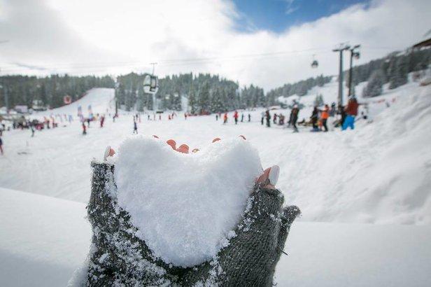 Sněhové zpravodajství: Pravá zimní atmosféra se sněžením i sluncem- ©Courchevel/Facebook