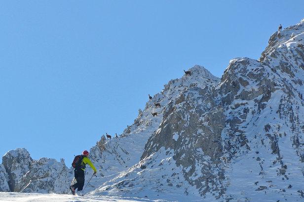 Les meilleurs plans hors-pistes des Pyrénées ©Alex Gosteli