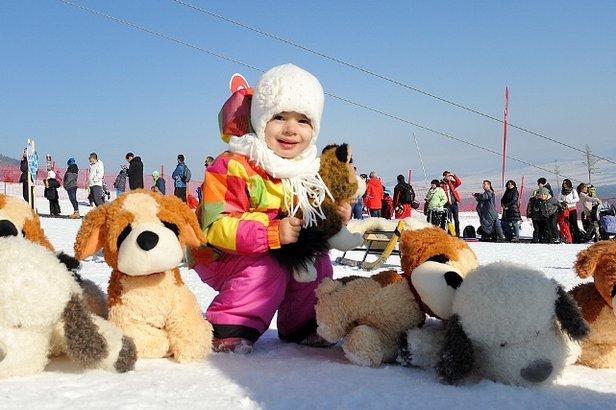 Do Tatranskej Lomnice mieria Snežné psy- ©Marek Hajkovský