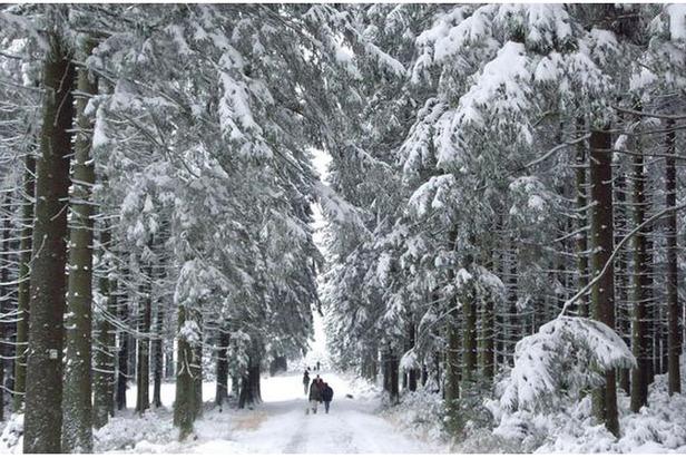 12cm Of Snow in Belgium And Holland