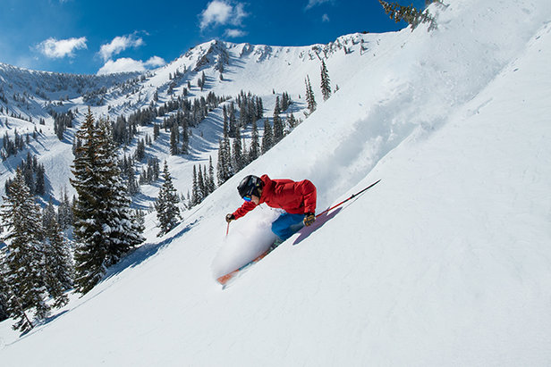 Nothing compares to bluebird powder days.  - © Snowbird Ski Resort | Scott Markewitz