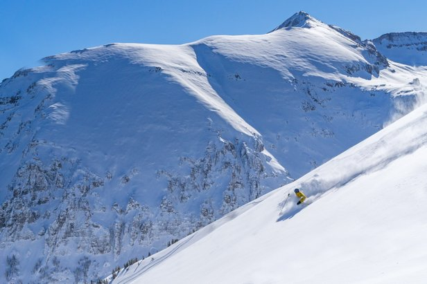 Making fresh tracks in Revelation Bowl is a blissful experience at Telluride.
