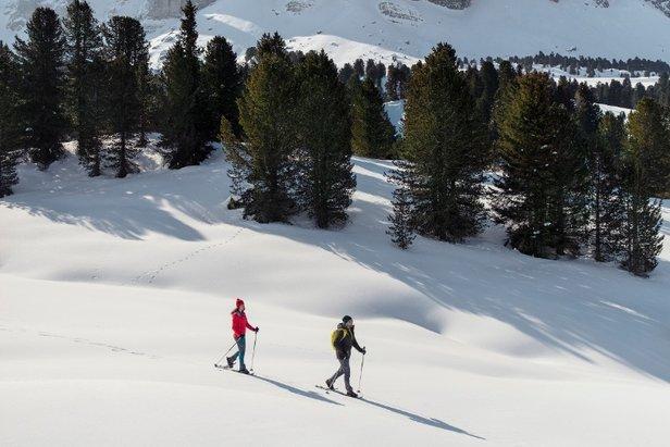 Do jednych z najbardziej popularnych tras wędrówek w rakietach śnieżnych należy ta prowadząca przez pastwisko Prato Piazza na szczyt Strudelkopf   - © South Tirol