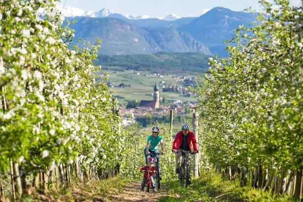 Rowery w Bolzano  - © IDM Südtiol Alex Filz Vinschgau-Val Venosta.jpg