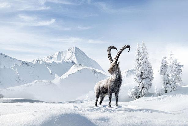 150 Jahre Wintertourismus: Graubünden feiert die Tradition und blickt in die Zukunft- ©Graubünden Ferien