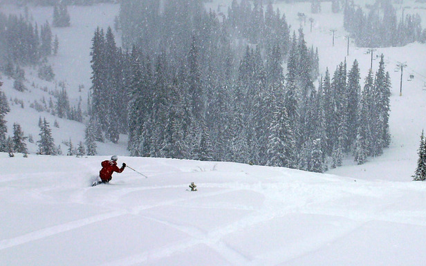 Telemarking in powder at Anthony Lakes. Photo by Brent/Flickr.