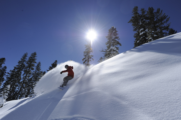 Snowboarder enjoying fresh tracks at Northstar California