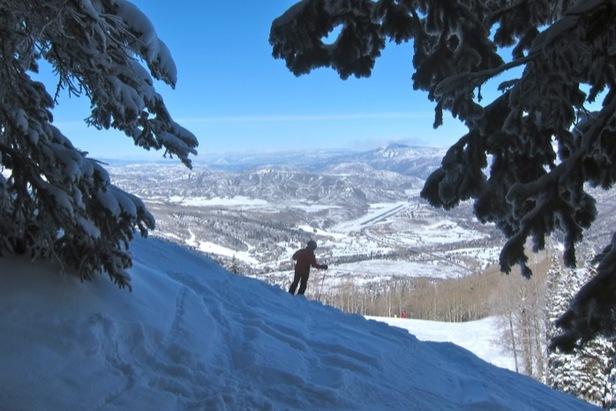 Aspen/Snowmass Tree Shrines: Jerry Garcia Shrine- ©Amanda Rae