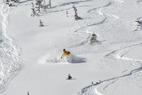 Ski For Free All Across Utah