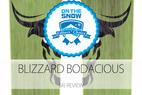 2015 Men's Powder Editors' Choice Ski: Blizzard Bodacious  - © Blizzard