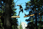 Adventure Park Agility Forest - ©Adventure Park Agility Forest