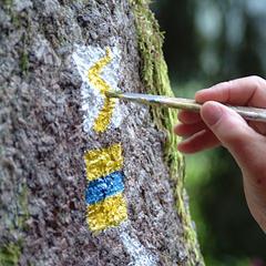 Die Markierung des Goldsteigs - © Tourismusverband Ostbayern e.V.