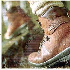 Gore Trekking Schuh - © W. L. Gore