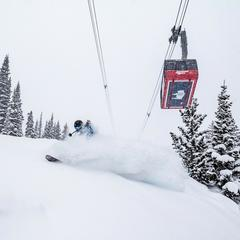 Jackson Hole Mountain Resort - © Jackson Hole Mountain Resort
